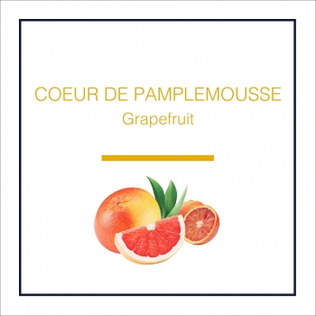 Lampe Berger Duft Grapefruit